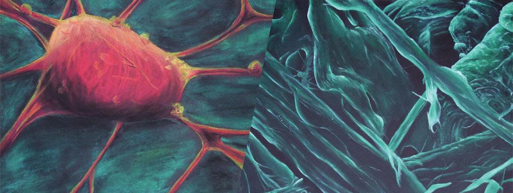 Natur: mikroskopisch – abstrakt